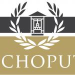 Echoput