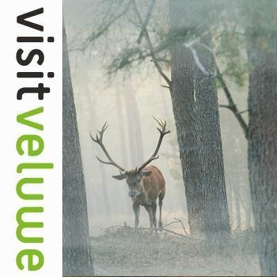 Visit Veluwe